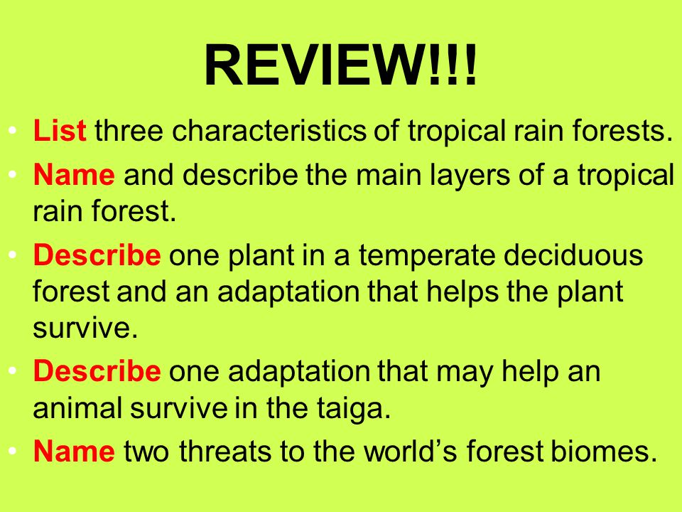 REVIEW!!! List three characteristics of tropical rain forests.