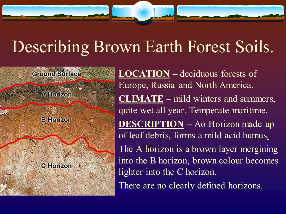 characteristics of brown earth soils To describe the characteristics of red brown earths chapter contents red brown earths • red brown earth soils have a topsoil of sandy loam to light clay.