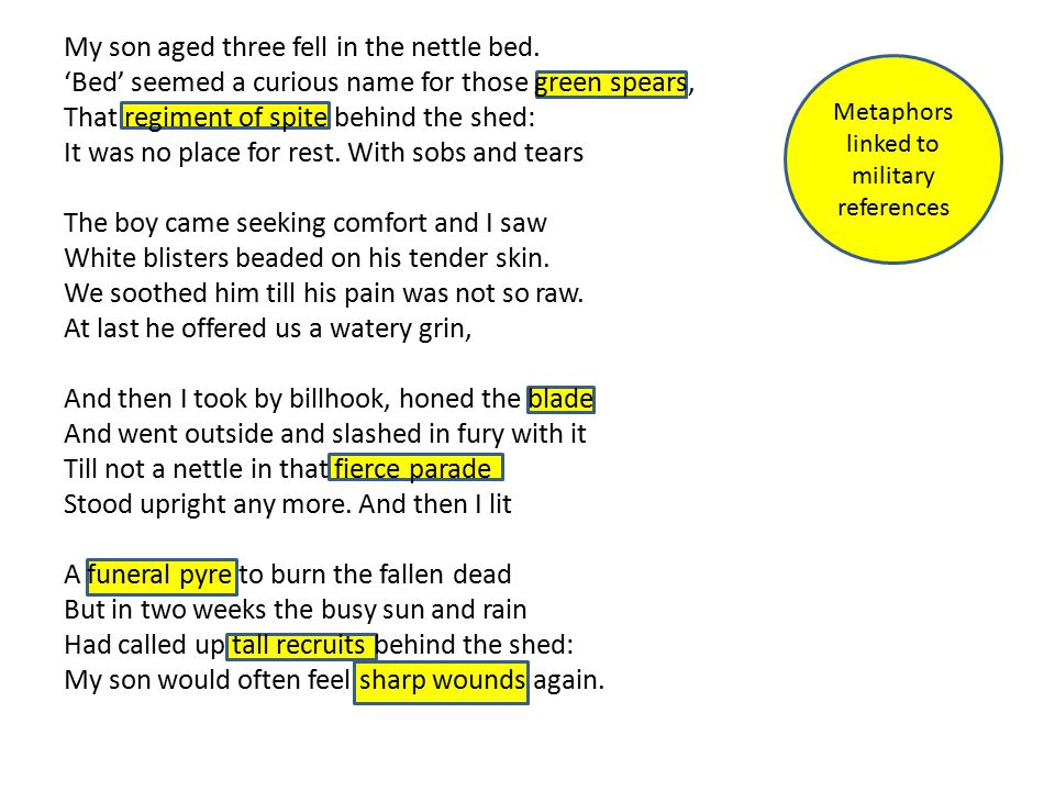 unseen poetry nettles Understand and analyse an unseen contemporary poem, to prepare for edexcel's gcse english literature, paper 2, section b, part 2 this lesson guides students through.