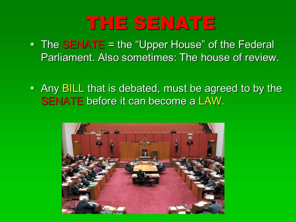 THE SENATE The SENATE = the Upper House of the Federal Parliament. Also sometimes: The house of review.