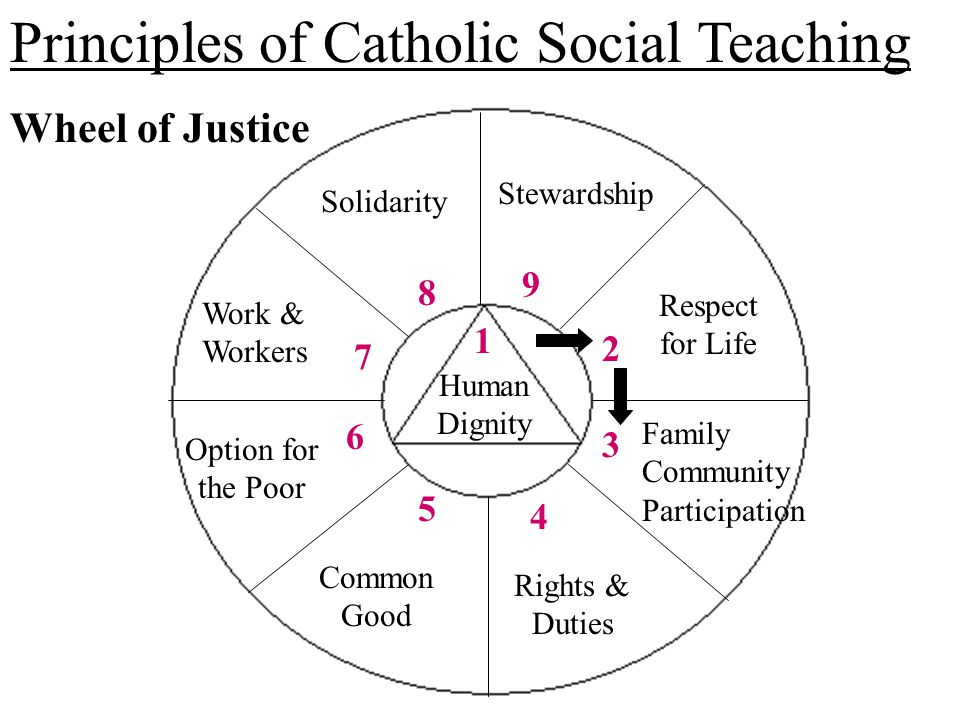 the principle teachings about peace in Key principles of catholic social teaching  our social teaching  community and the  a close relationship in catholic teaching between peace.