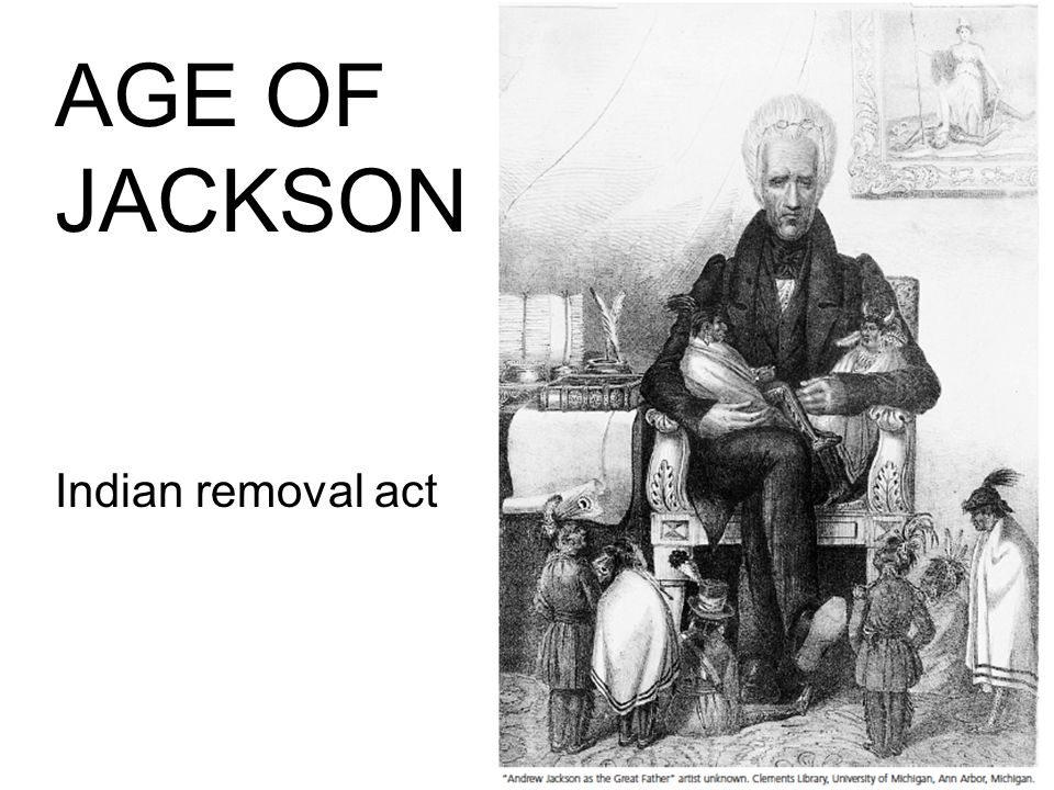Did Andrew Jackson's Removal Act Benefit the Indians?