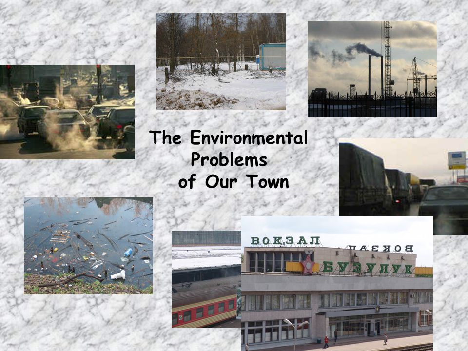 The Environmental Problems of Our Town