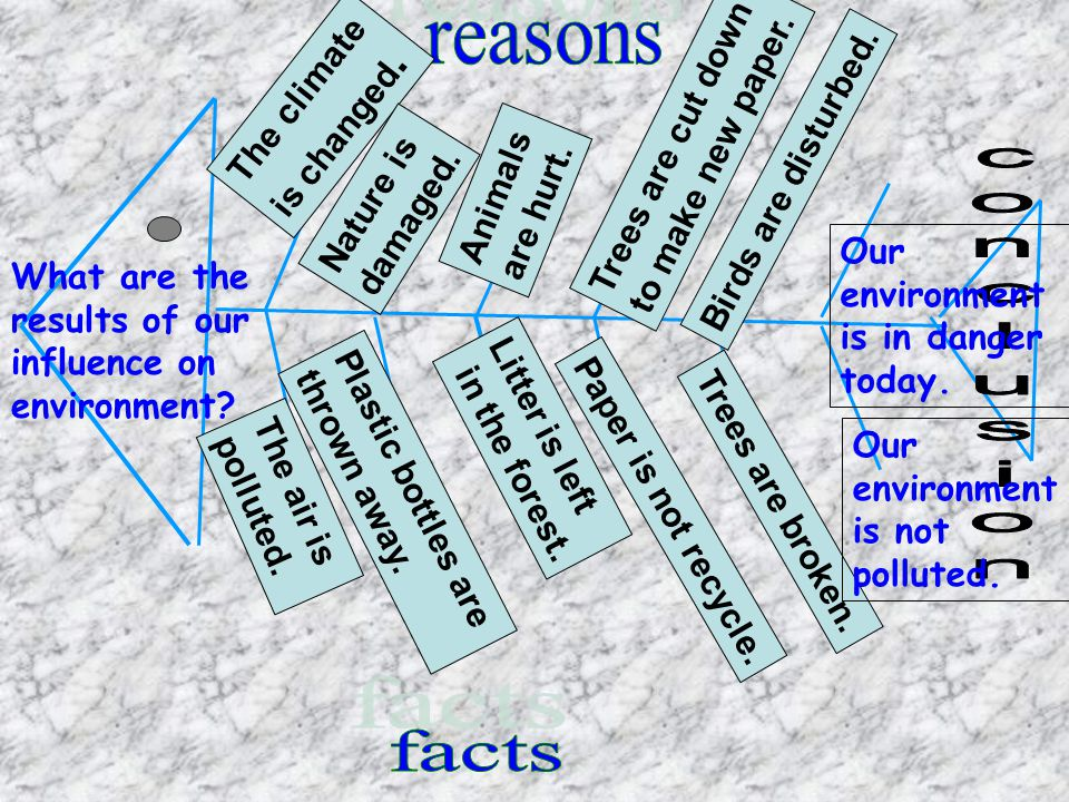 reasons conclusion facts The climate Trees are cut down is changed.