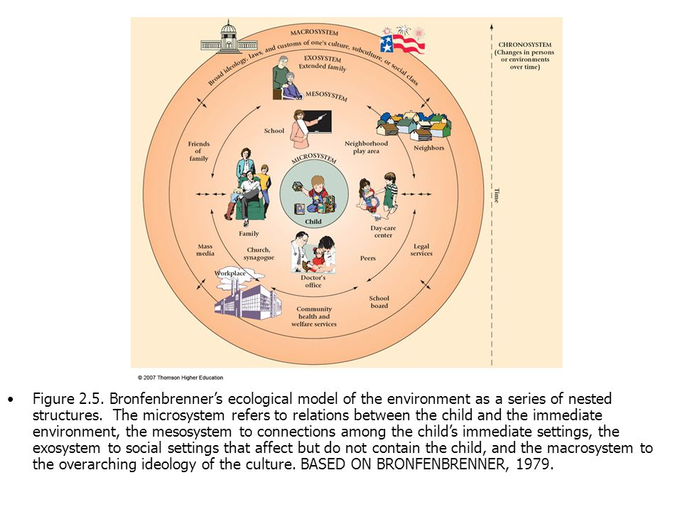 Theories of human development ppt download bronfenbrenners ecological model of the environment as a series of nested structures ccuart Gallery