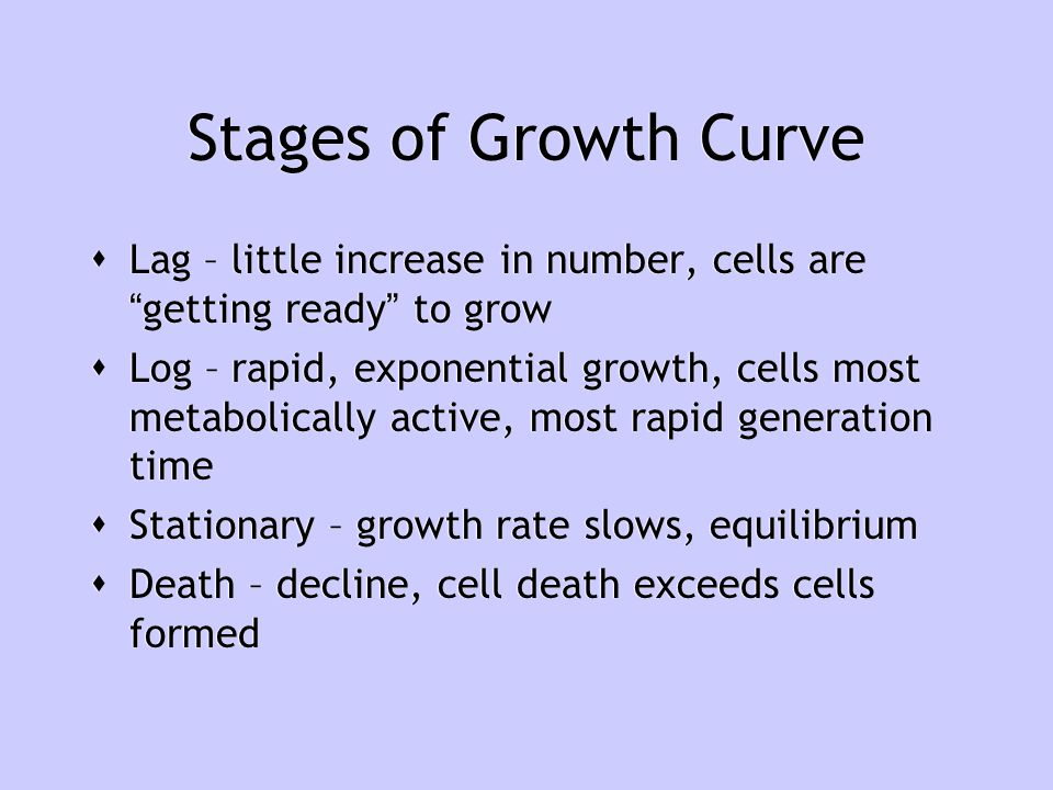 Stages of Growth Curve Lag – little increase in number, cells are getting ready to grow.