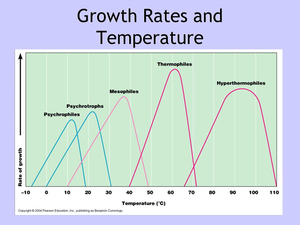 Growth Rates and Temperature