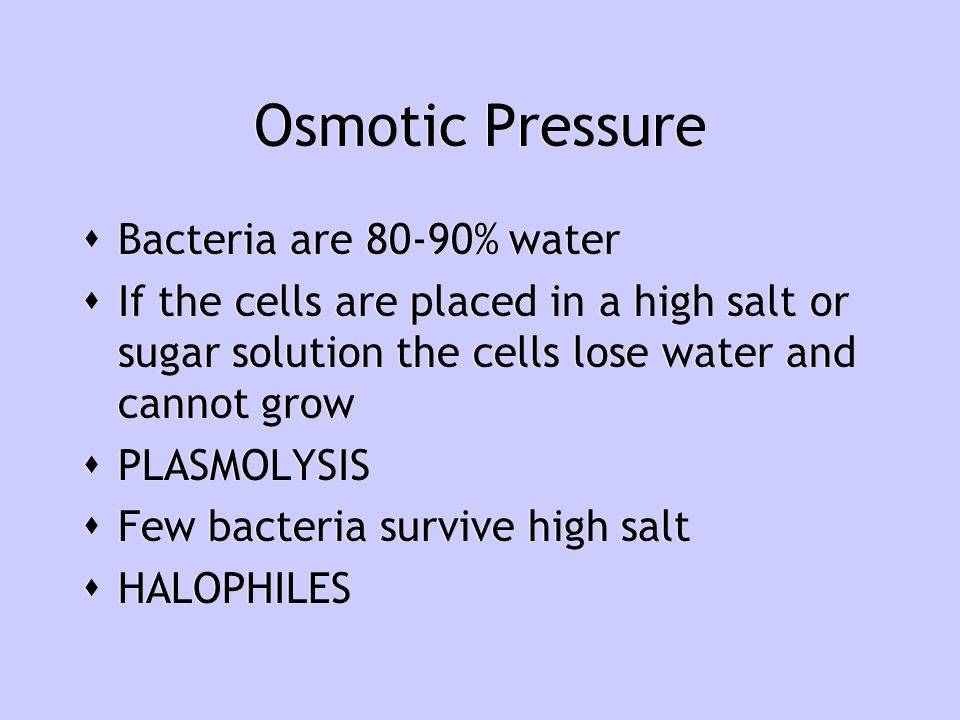 Osmotic Pressure Bacteria are 80-90% water