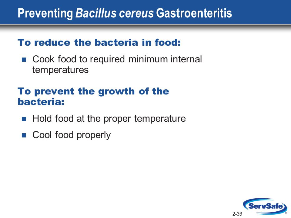 Cooling Food Properly : The microworld instructor notes ppt download