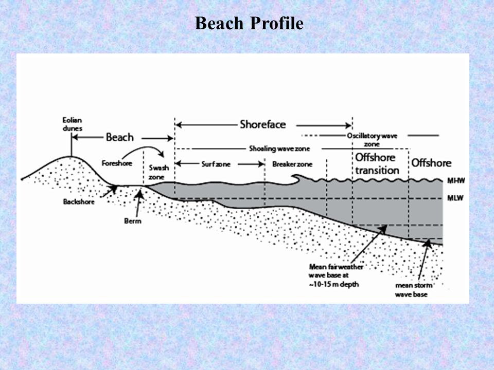 Marginal Marine Environments Ppt Video Online Download