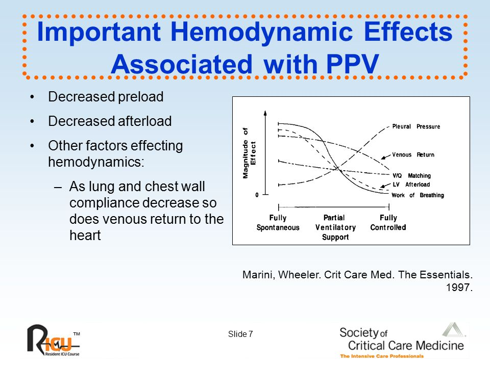 Important Hemodynamic Effects Associated with PPV