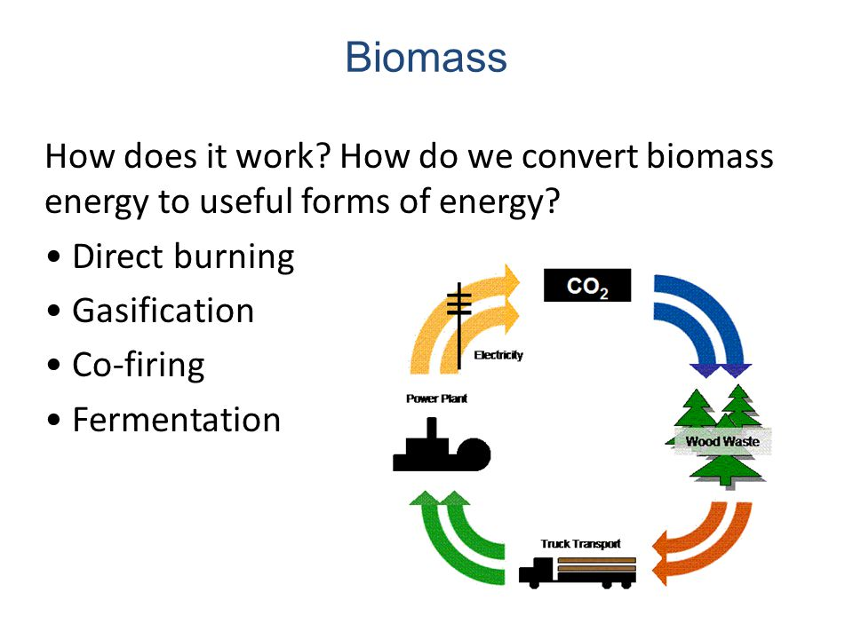 How Does Biomass Combustion Work ~ Energy and the environment renewable resources