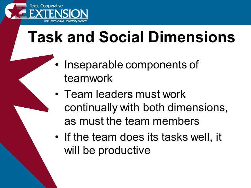 Task and Social Dimensions