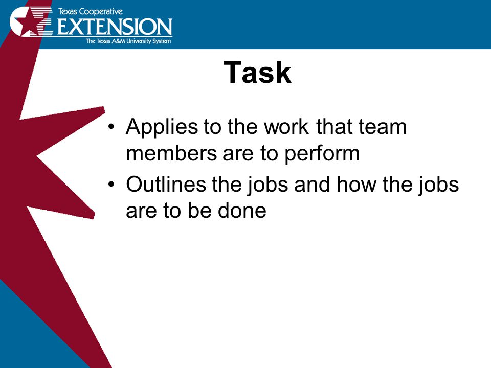 Task Applies to the work that team members are to perform