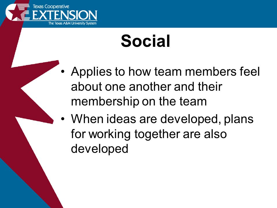 Social Applies to how team members feel about one another and their membership on the team.