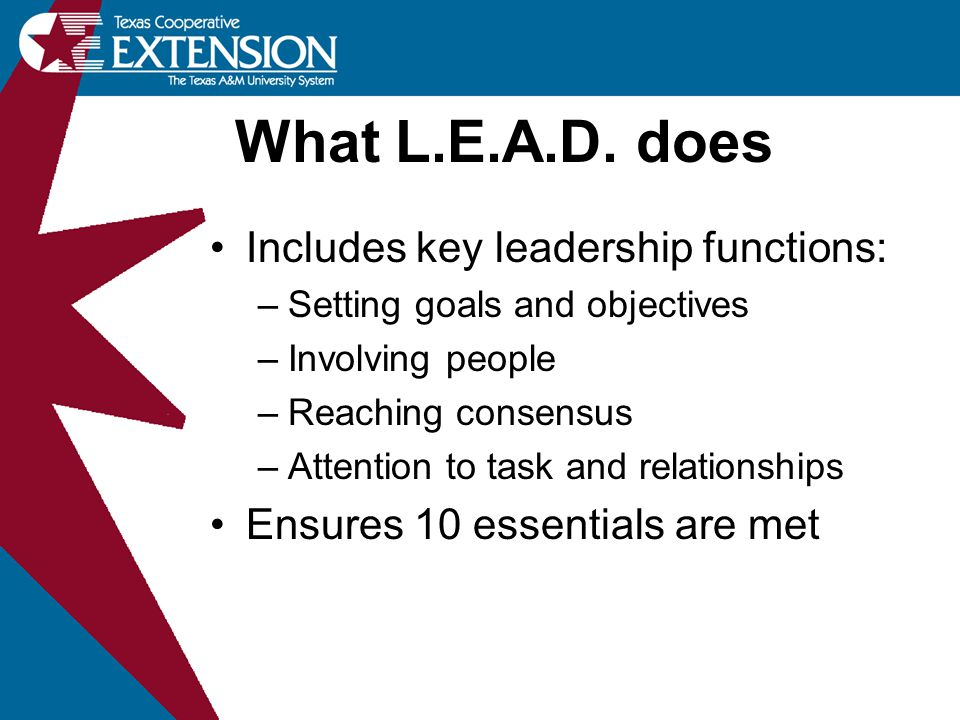 What L.E.A.D. does Includes key leadership functions: