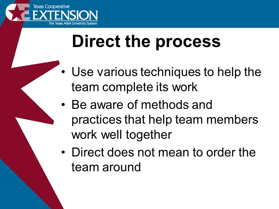 Direct the process Use various techniques to help the team complete its work.