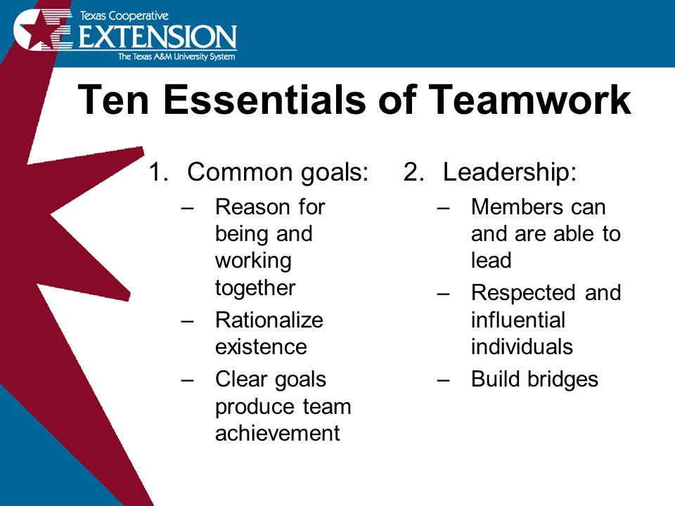 Ten Essentials of Teamwork