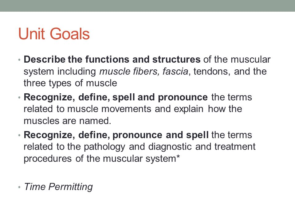 the muscular system unit ppt download, Muscles