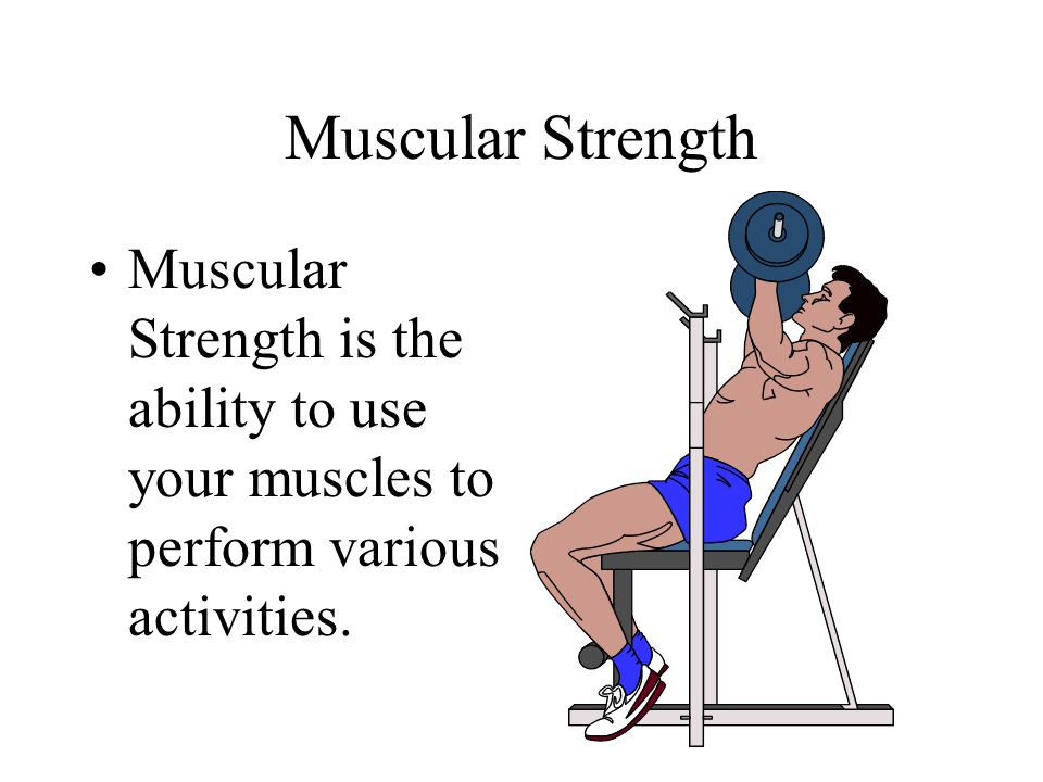 Muscular Strength Muscular Strength is the ability to use your muscles to perform various activities.
