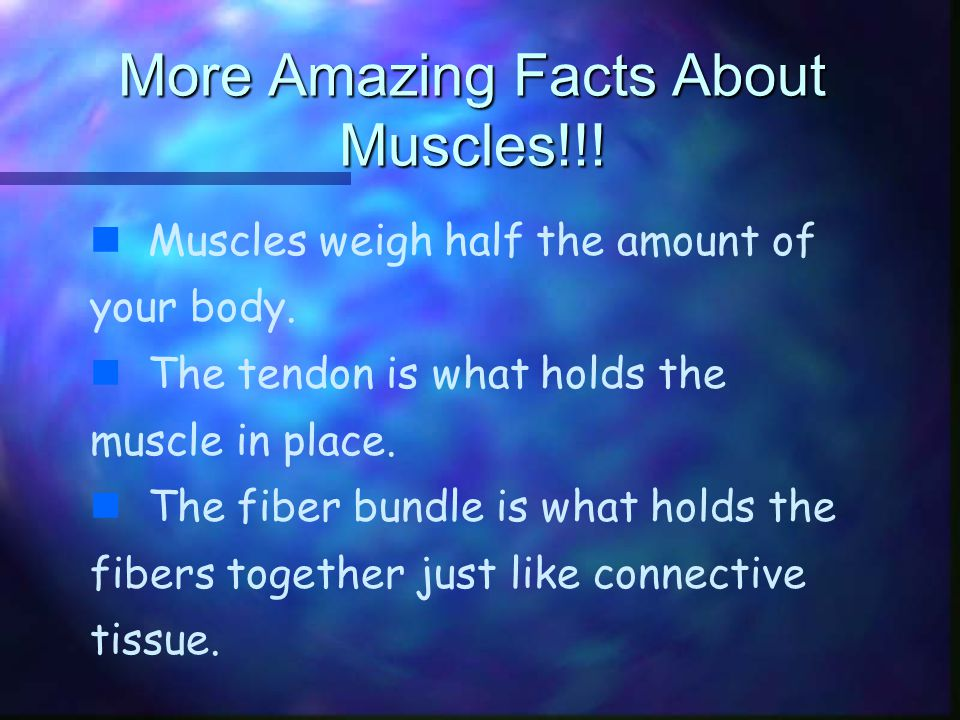 the amazing muscular system! - ppt download, Muscles
