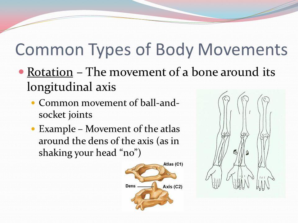 5 05 Types Of Body Movement – Desenhos Para Colorir
