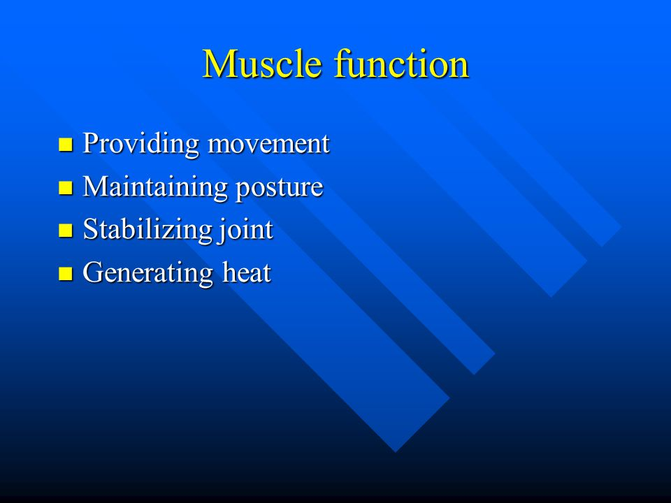 Muscle function Providing movement Maintaining posture