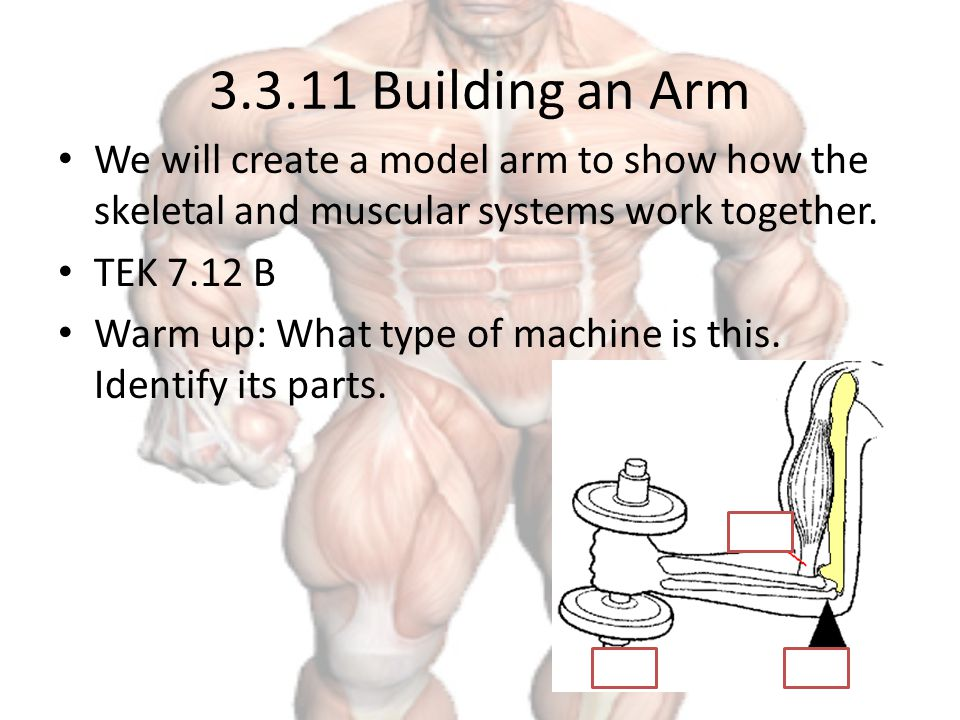 how to create a systems model work