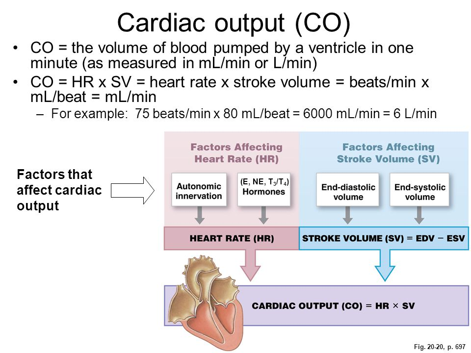how does volume affect heart rate Ii problem/research question – your heart rate can be affected and changed using a variety of things one thing that can cause your heart rate to change is the volume of audio how does the volume of an audio track affect your heart rate if the volume of an audio track is increased, the number of hearts beats per minute will increase as well iii.