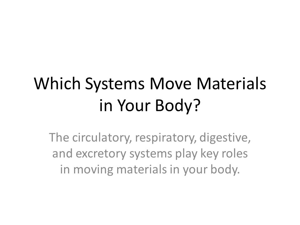 Which Systems Move Materials in Your Body