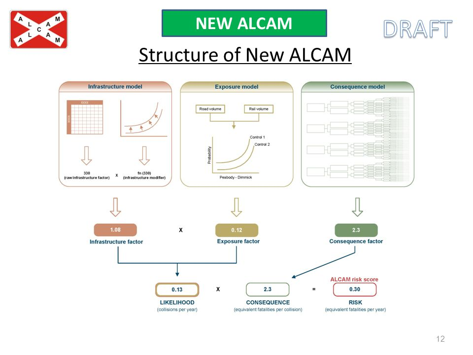 NEW ALCAM DRAFT Structure of New ALCAM
