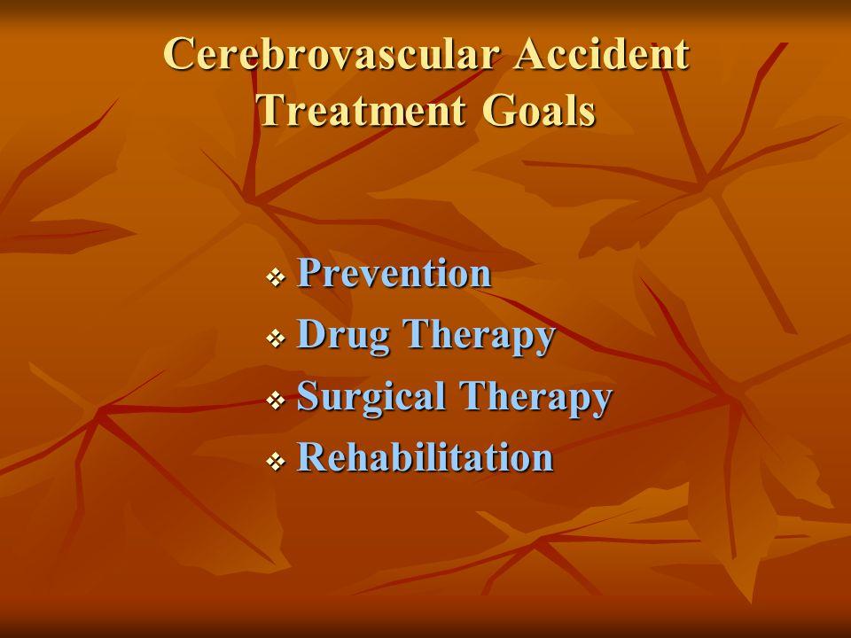 Cerebrovascular Accident CVA - ppt video online download