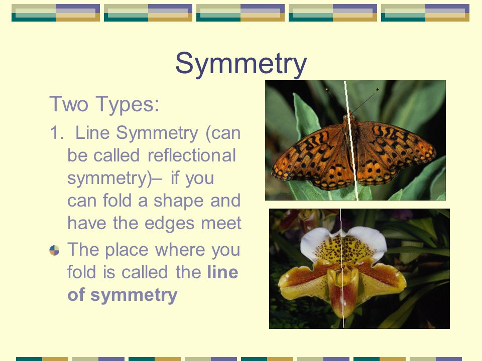 Symmetry Two Types: 1. Line Symmetry (can be called reflectional symmetry)– if you can fold a shape and have the edges meet.