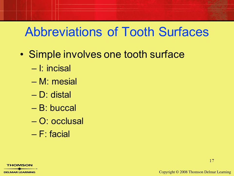 Abbreviations Of Tooth Surfaces