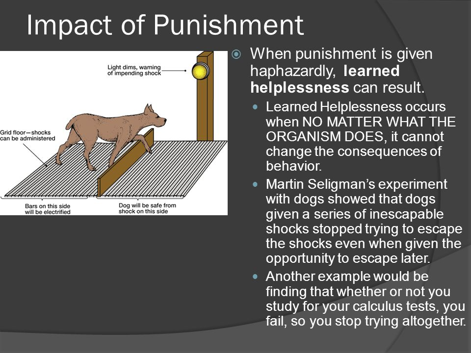 Learned Helplessness - an overview | ScienceDirect Topics