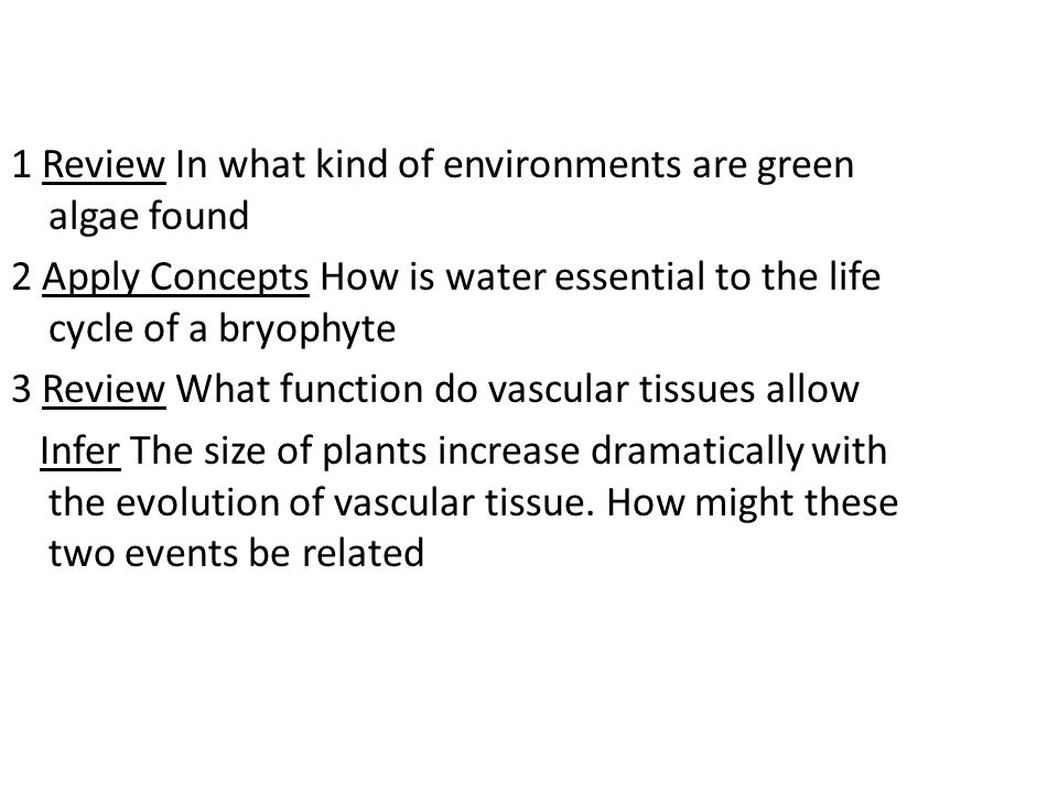1 Review In what kind of environments are green algae found 2 Apply Concepts How is water essential to the life cycle of a bryophyte 3 Review What function do vascular tissues allow Infer The size of plants increase dramatically with the evolution of vascular tissue.