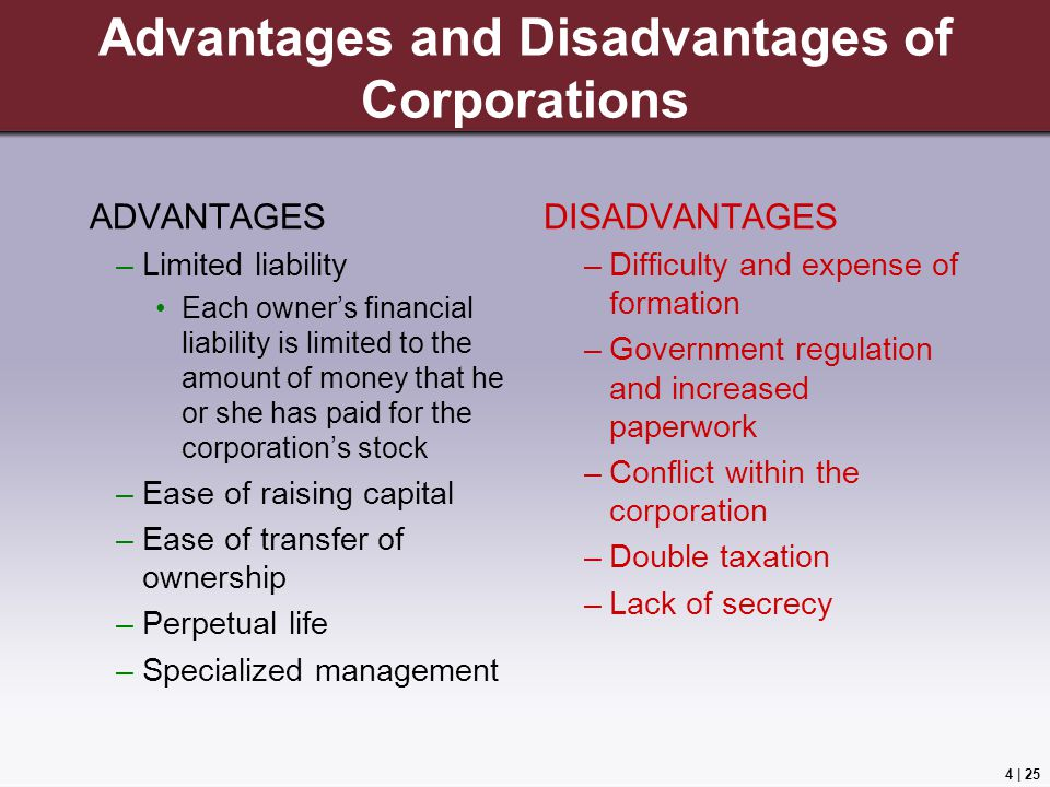 Advantages & Disadvantages of Owning Your Own Company