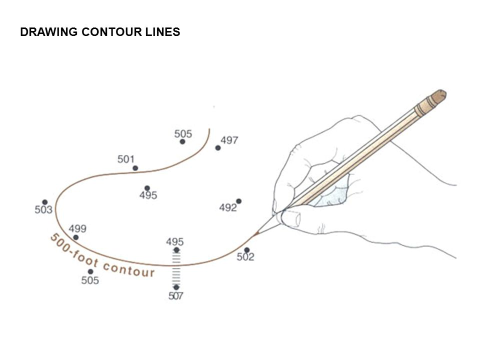 Contour Line Drawing Pdf : Drawing contour lines worksheet resultinfos