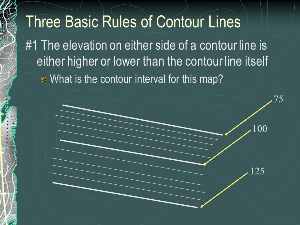 Contour Line Drawing Rules : Where is this the cell ppt download