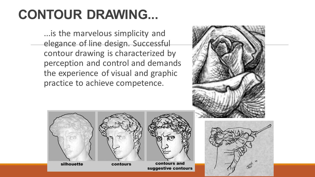 Most Characteristic Of Contour Line Drawing : Contour line ppt video online download