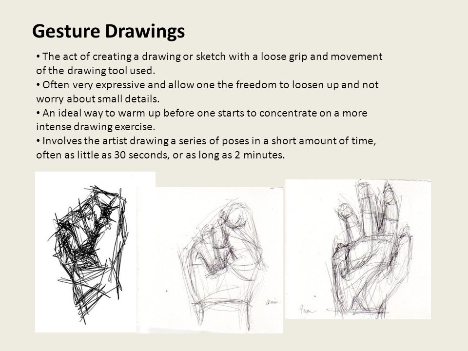 Contour Line Drawing Contour Lines - Lines That Surround And Define The Edges Of A Subject ...