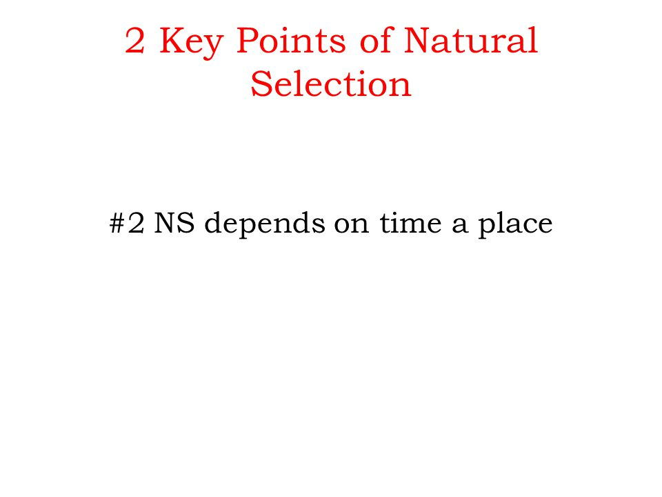 Points Of Darwin S Natural Selection