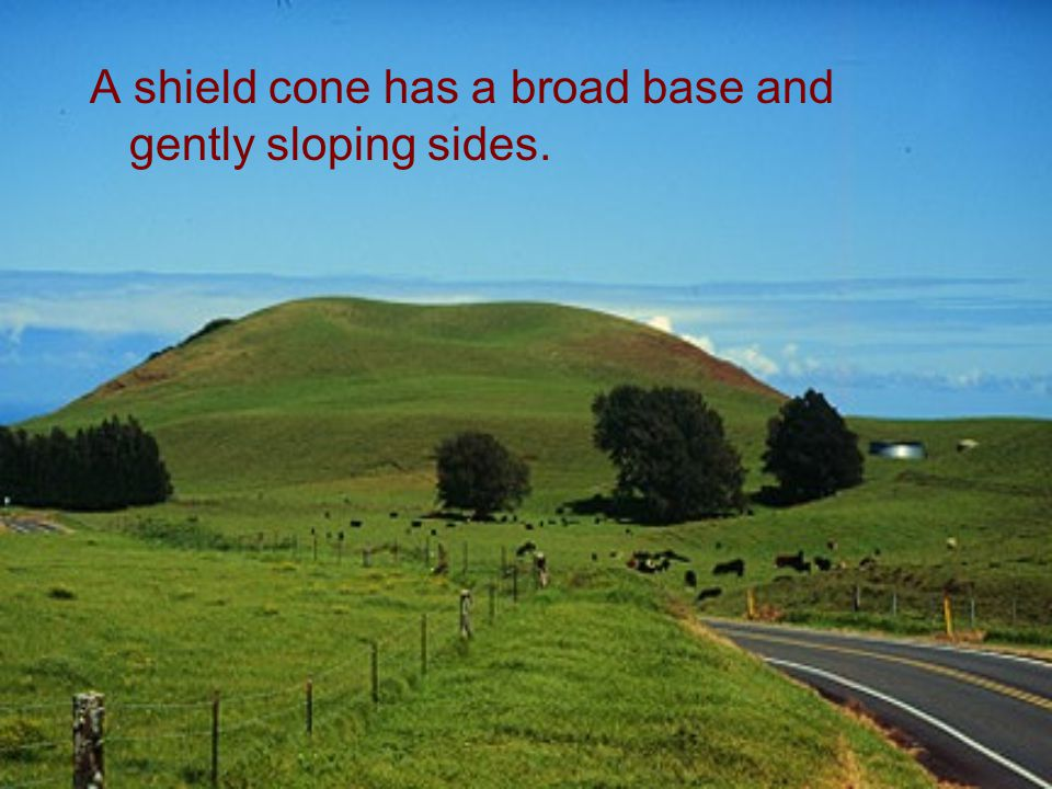 A shield cone has a broad base and gently sloping sides.