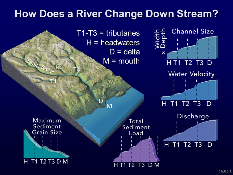 Coastal sediment transport takes place in nearshore environments due to the motions of waves and currents At the mouths of rivers coastal sediment and fluvial sediment transport processes mesh to create river deltas