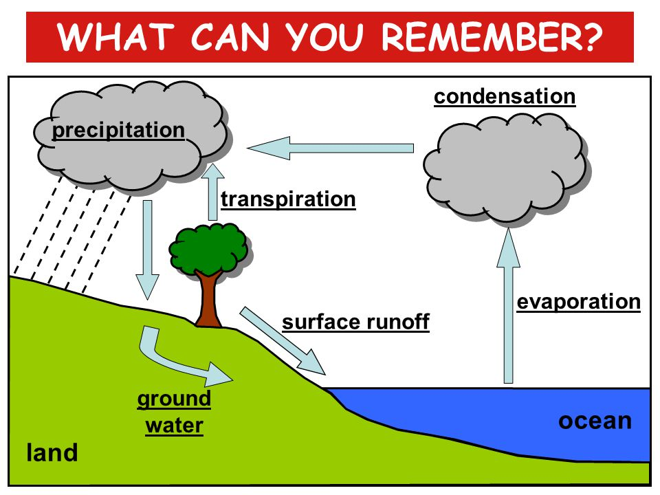 WHAT CAN YOU REMEMBER ocean land condensation precipitation