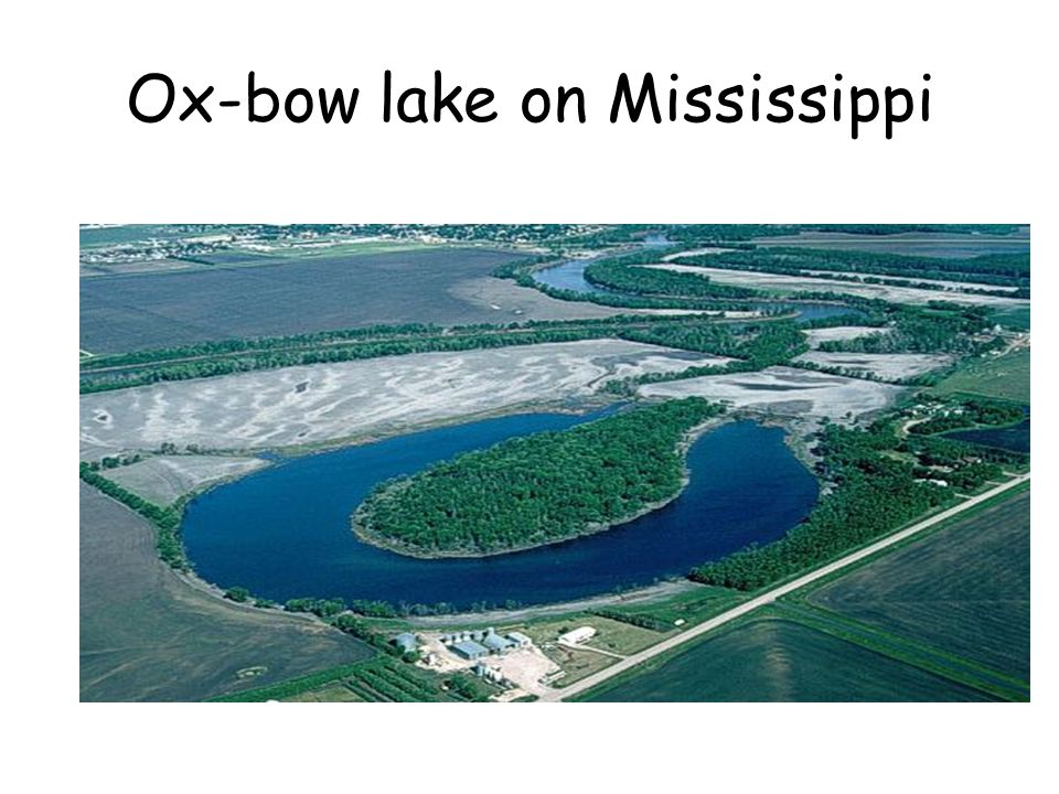 Ox-bow lake on Mississippi