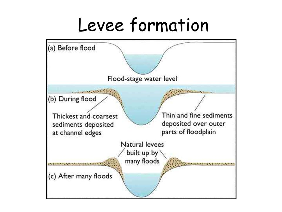 Levee formation