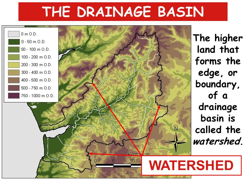 THE DRAINAGE BASIN WATERSHED Nature's 'kitchen sink'