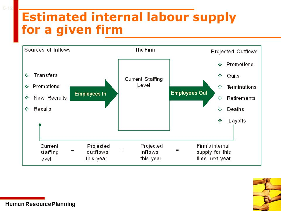 Estimated internal labour supply for a given firm
