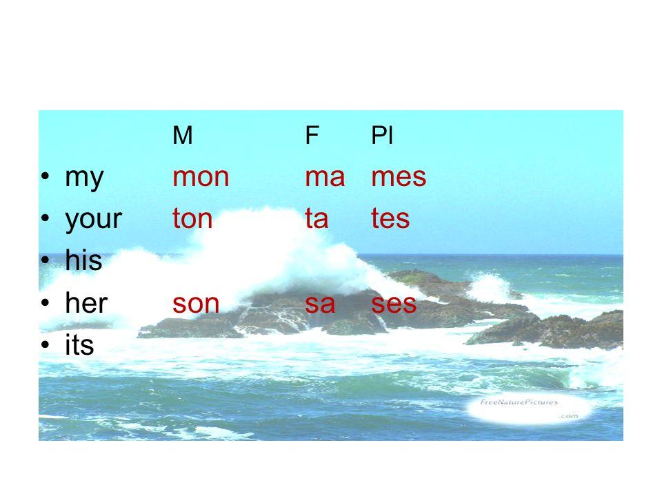M F Pl my mon ma mes your ton ta tes his her son sa ses its
